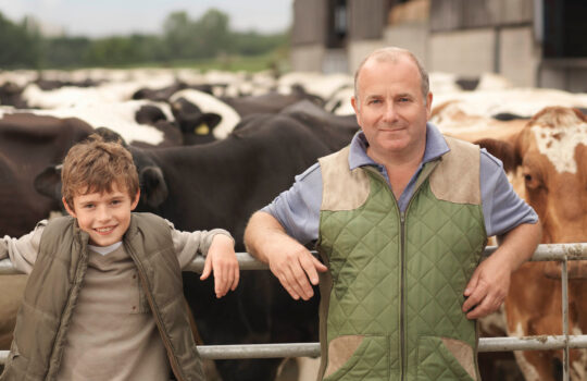Farmer and son stood in front of field of cows
